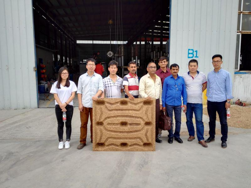 India clients highly praised Thoyu quality press wood pallet machine